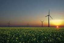 Renewable Energy-windpower