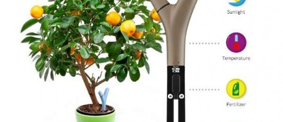 [CES 2015] Flower Power H2O U2013 A Smart Water Control Gadget For Your Tree